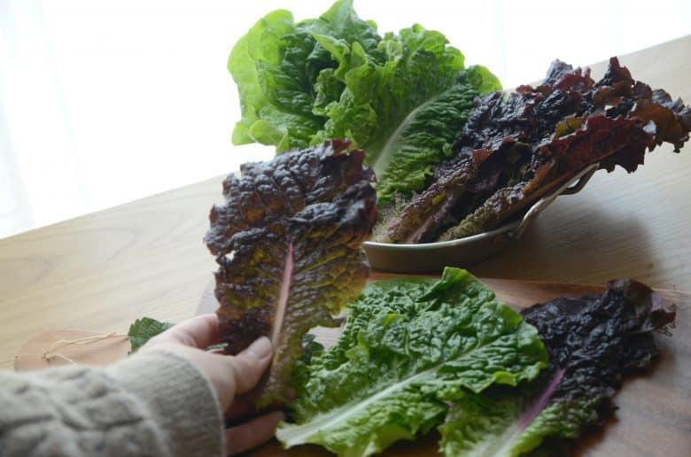 韓式烤肉生菜